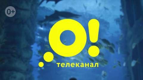 Телеканал «О!» номинирован на премию «Большая Цифра»