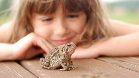 Как помочь ребенку победить страх: 5 эффективных техник