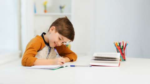 Личный опыт: мой сын — на домашнем обучении