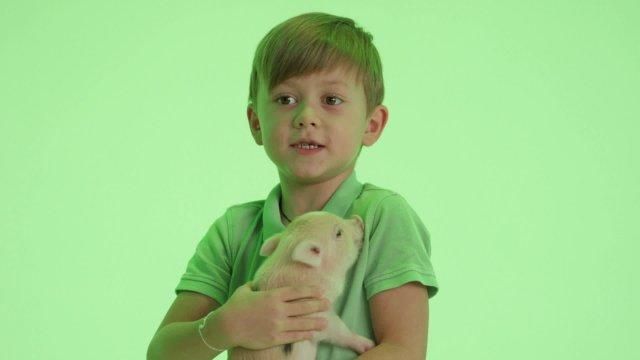 День домашних животных на телеканале «О!»