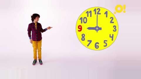 Распорядок дня важен не только для людей, и вот почему (видео)
