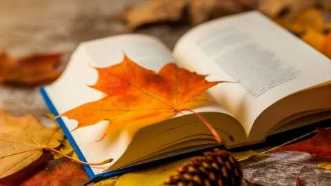 Тютчев или Фет? 10 вопросов для знатоков поэзии