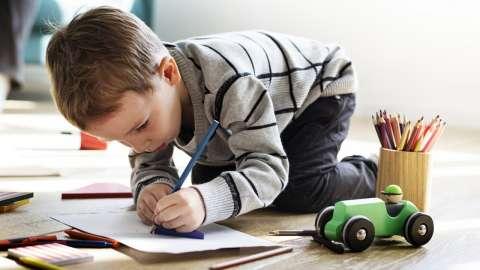 Как нарисовать дерево: советы, которые помогут ребёнку создать шедевр