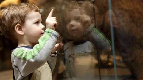 Искусство этикета: как должен вести себя ребёнок в музее и на выставке