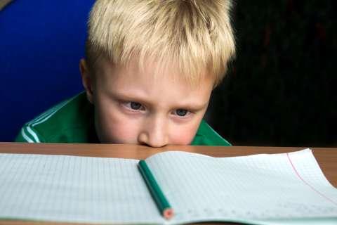 Домашняя работа: как решить проблемы с уроками