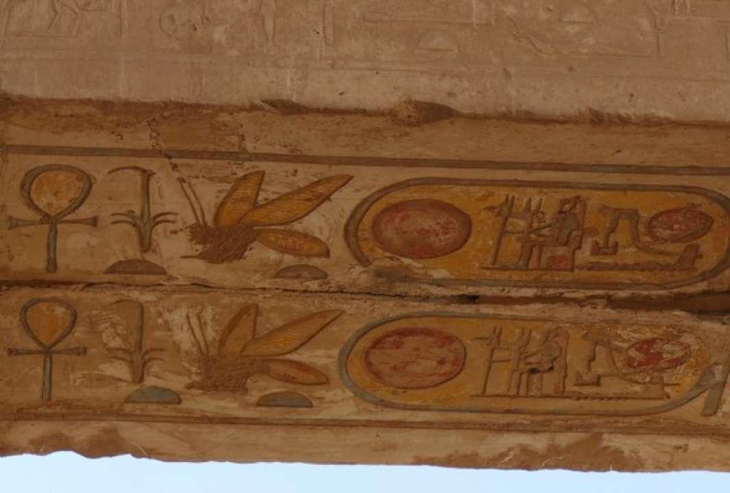 Пчёла из Храмового комплекса в Карнаке на территории древнего города Фивы